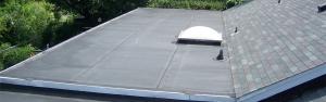 New Shingle Flat Roof